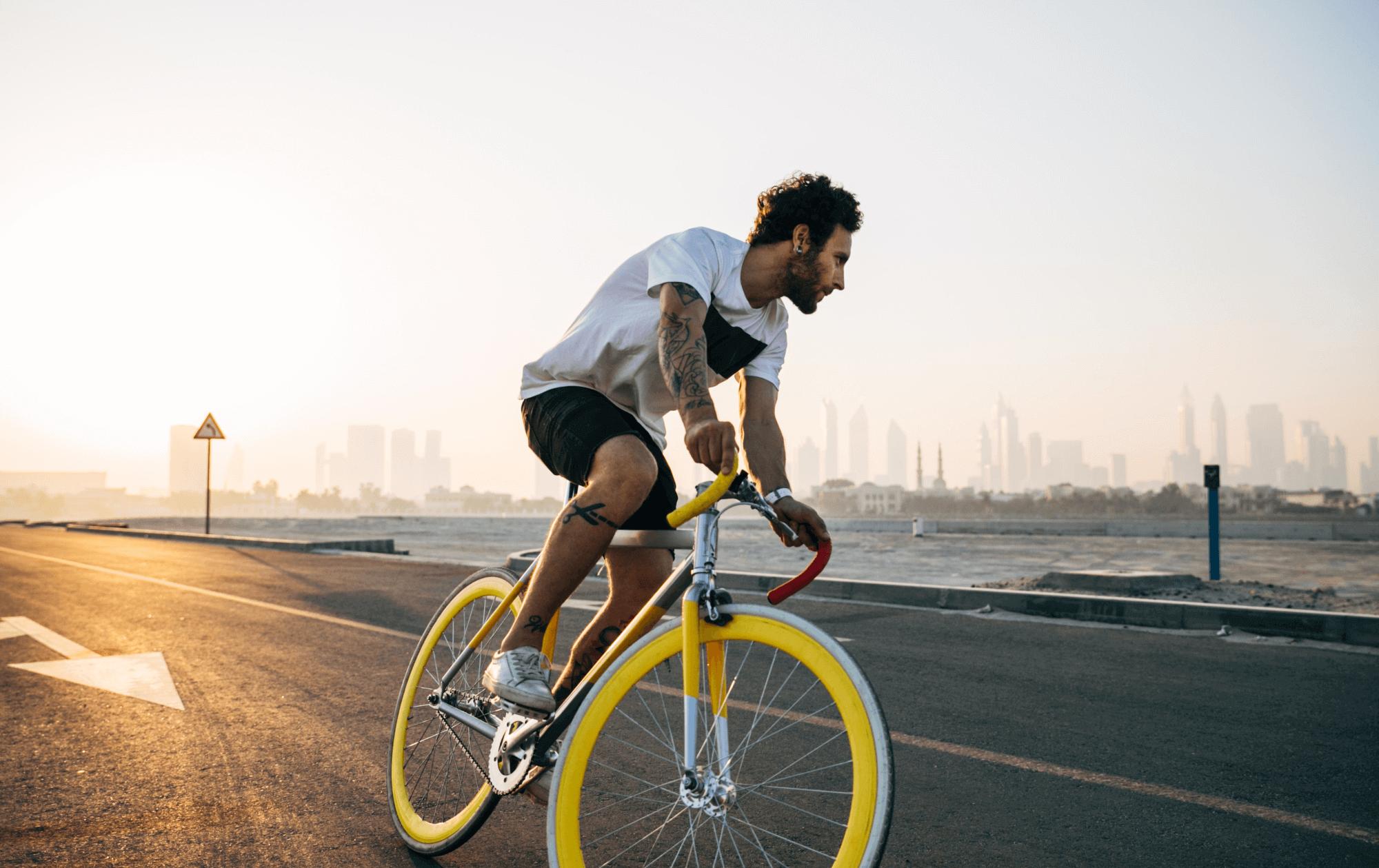 10 business intelligence lessen   Case: fietsenwinkel.nl
