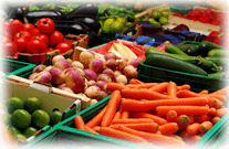 Permanente 'BI-loop' bij Dujardin Foods
